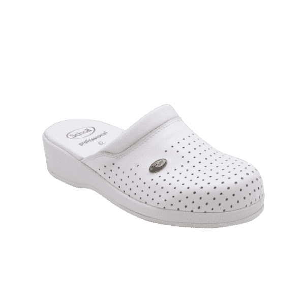 CLOG BECK GUARD KLOMPA